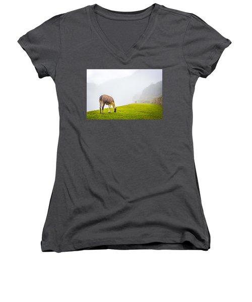 Llama  Women's V-Neck