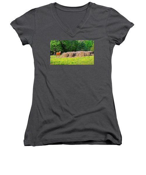 Lone Cow Guard, Smith Mountain Lake Women's V-Neck (Athletic Fit)