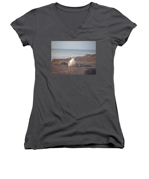 Women's V-Neck T-Shirt (Junior Cut) featuring the photograph Lone Gull by  Newwwman