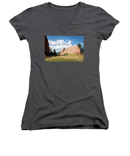 Long Ears Women's V-Neck T-Shirt (Junior Cut)