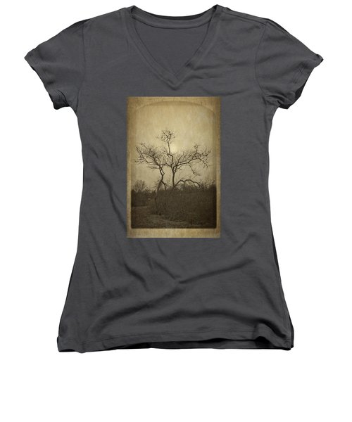 Long Pasture Wildlife Perserve. Women's V-Neck T-Shirt