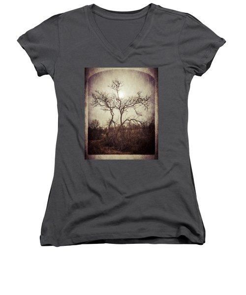 Long Pasture Wildlife Perserve 2 Women's V-Neck T-Shirt