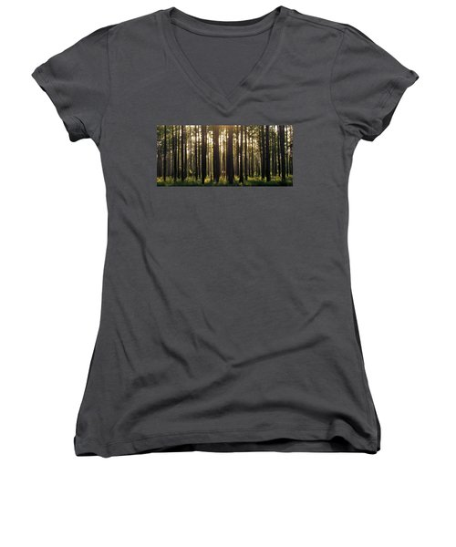 Longleaf Pine Forest Women's V-Neck (Athletic Fit)
