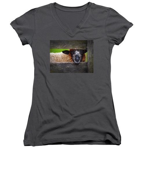 Lookin At Ewe Women's V-Neck T-Shirt (Junior Cut)