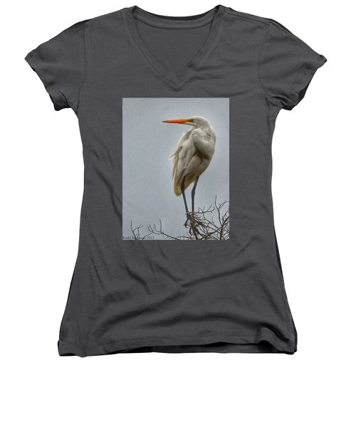 Looking Women's V-Neck (Athletic Fit)