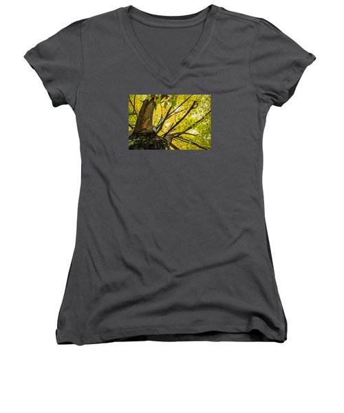 Looking Up - 9676 Women's V-Neck T-Shirt (Junior Cut) by G L Sarti