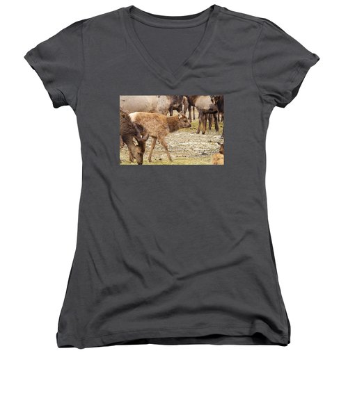 Women's V-Neck T-Shirt (Junior Cut) featuring the photograph Lost In The Herd by Jeff Swan