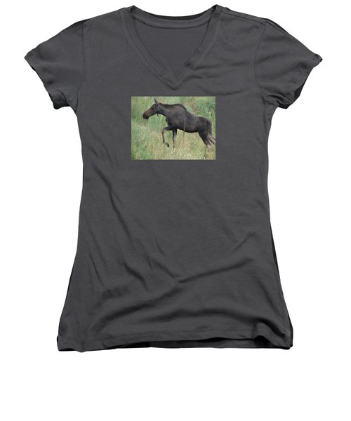 Lost Moose On The Loose In Evergreen Colorado Women's V-Neck T-Shirt