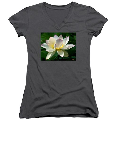 Lotus Beauty--disheveled Dl061 Women's V-Neck T-Shirt