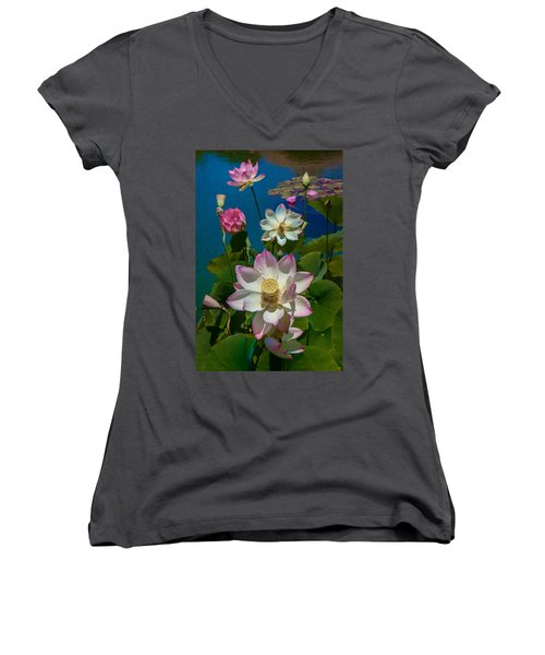 Lotus Pool Women's V-Neck T-Shirt