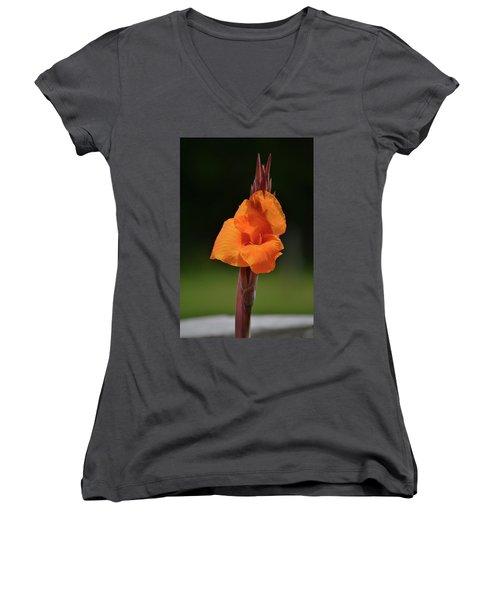 Lovely Iris Flower Women's V-Neck (Athletic Fit)