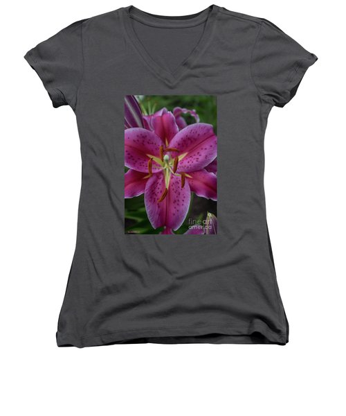 Lovely Lily Women's V-Neck (Athletic Fit)