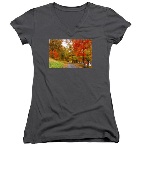 Lower Lake Loop Trail Women's V-Neck T-Shirt (Junior Cut) by Barbara Bowen