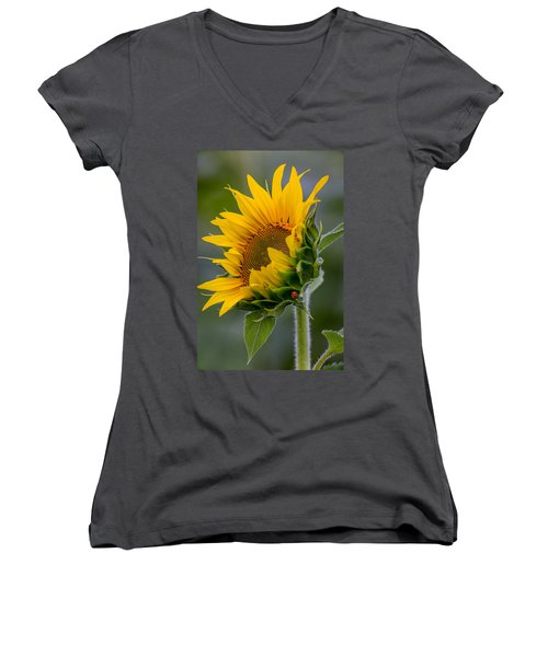 Women's V-Neck featuring the photograph Lucky Lady by Dale Kincaid
