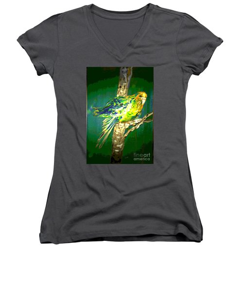 Women's V-Neck T-Shirt (Junior Cut) featuring the painting Lucky Louie by Desline Vitto