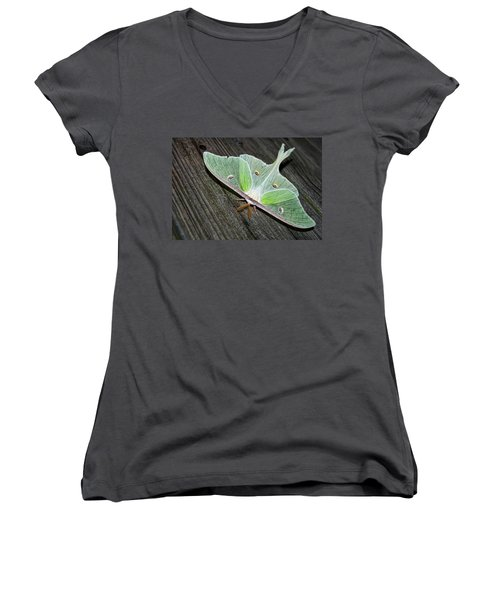 Luna Moth Women's V-Neck