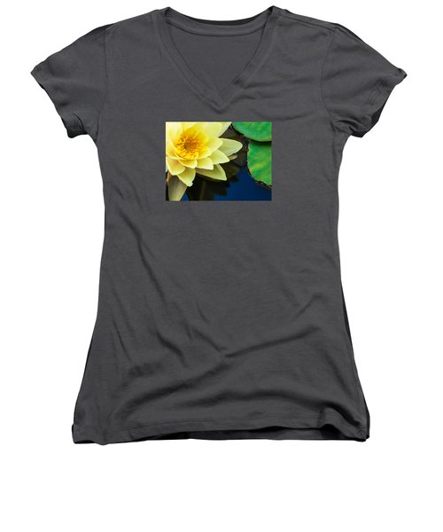 Macro Image Of Yellow Water Lilly Women's V-Neck T-Shirt (Junior Cut) by John Williams
