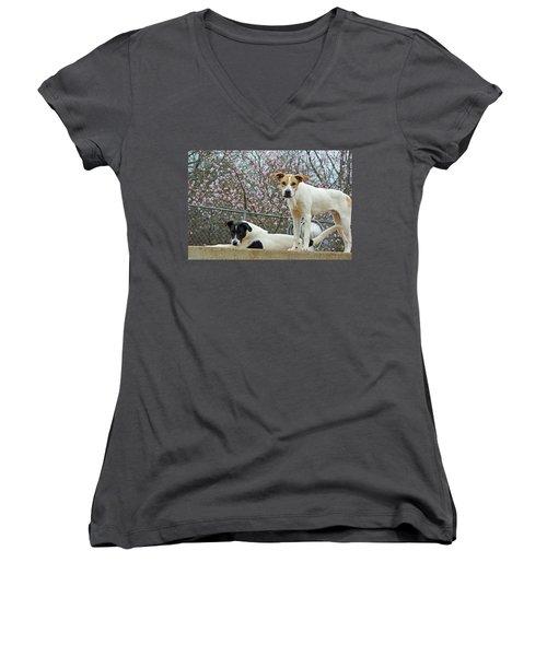 Maddy And Sammy Springtime Women's V-Neck T-Shirt