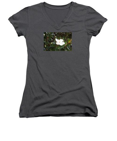 Magnolia Blossom Women's V-Neck T-Shirt