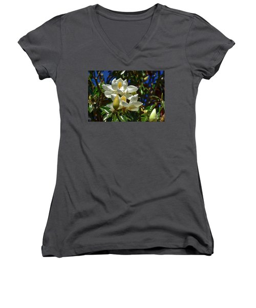 Magnolia Blossoms Women's V-Neck T-Shirt
