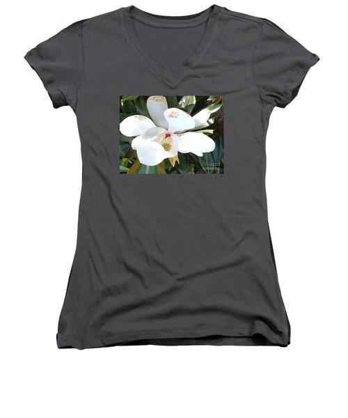 Women's V-Neck T-Shirt (Junior Cut) featuring the photograph Magnolia Tree Bloom by Debra Crank