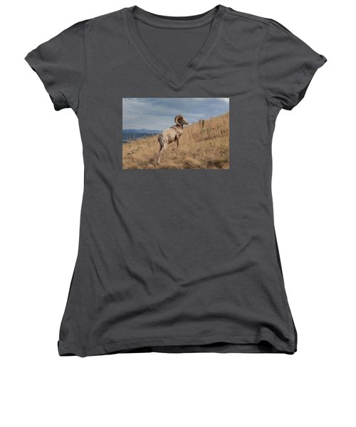 Women's V-Neck T-Shirt featuring the photograph Majestic Bighorn  by Fran Riley