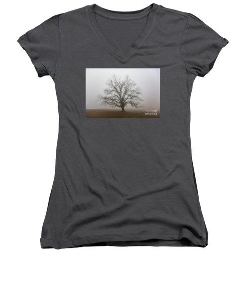 Majestic Fog Women's V-Neck T-Shirt (Junior Cut) by Robert Loe