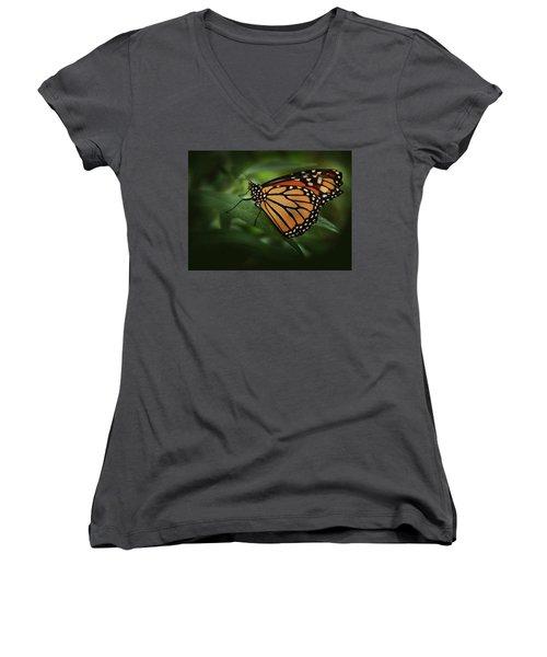 Majestic Monarch Women's V-Neck T-Shirt (Junior Cut) by Marie Leslie