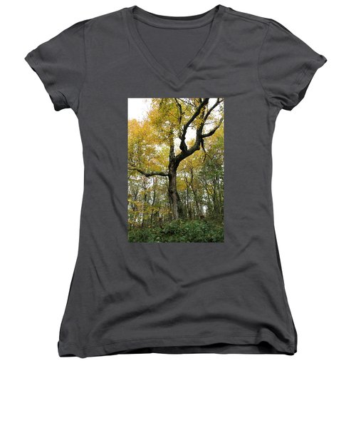 Majestic Tree Women's V-Neck T-Shirt