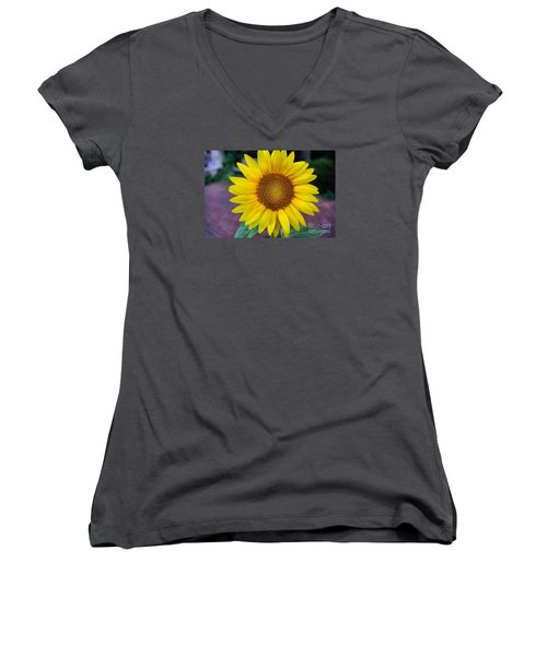 Makes  Me And You Smile Women's V-Neck T-Shirt (Junior Cut) by John S