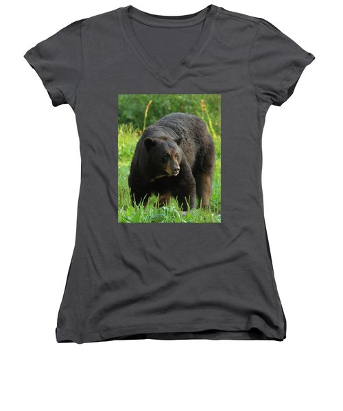 Women's V-Neck T-Shirt (Junior Cut) featuring the photograph Male Black Bear In Late Light by Coby Cooper