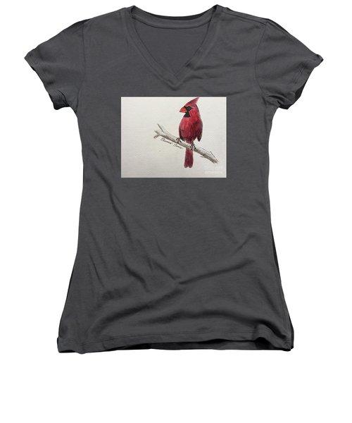 Male Cardinal In Winter Women's V-Neck