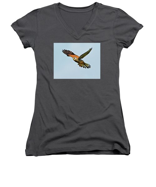 Male Kestrel In The Wind. Women's V-Neck T-Shirt (Junior Cut) by Paul Scoullar