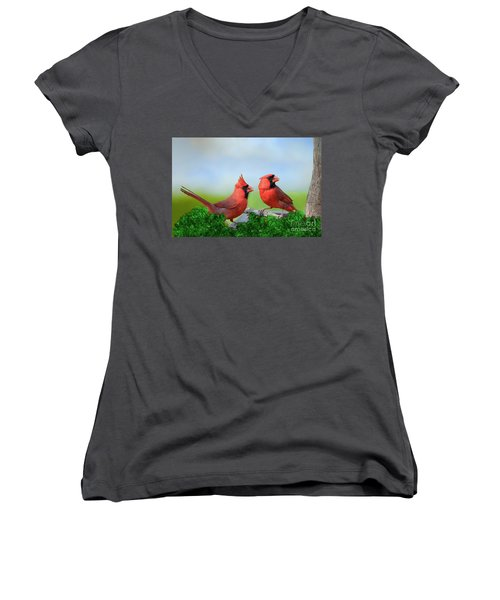 Male Northern Cardinals In Spring Women's V-Neck T-Shirt