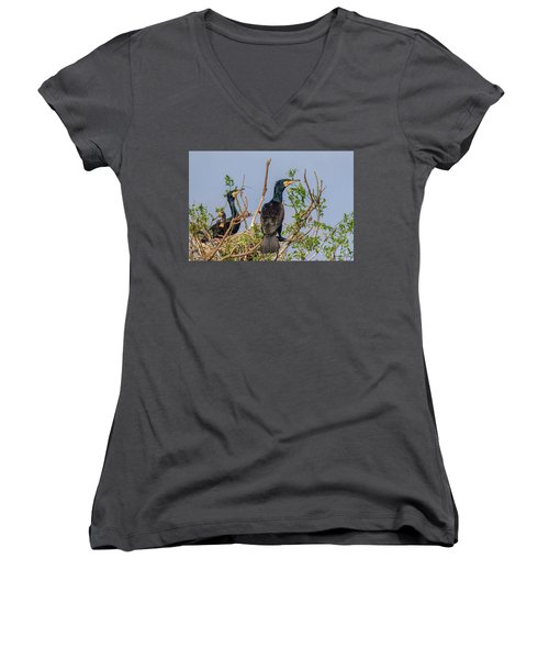 Mama, Papa And Kids - Danube Delta Women's V-Neck (Athletic Fit)
