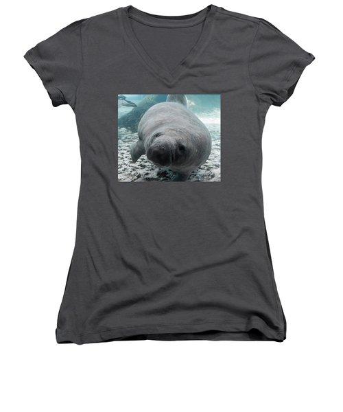 Manatee Women's V-Neck T-Shirt