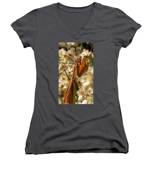 Mantis Pose Women's V-Neck T-Shirt