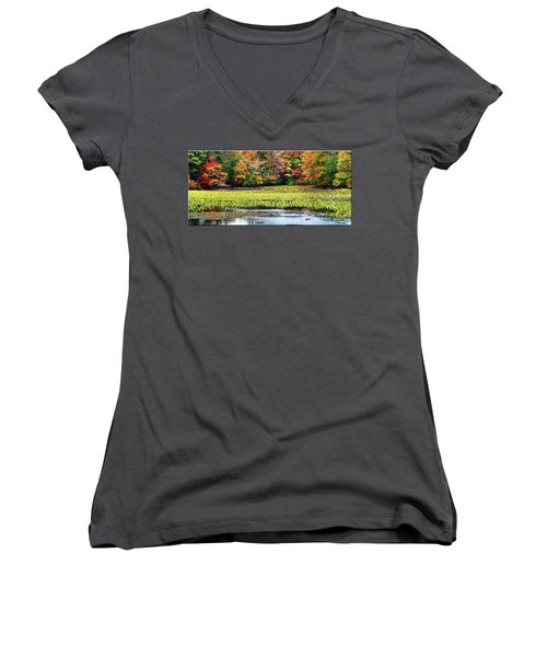 Many Colors Of Autumn Women's V-Neck T-Shirt (Junior Cut) by Mikki Cucuzzo