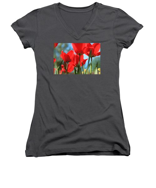 March Tulips Women's V-Neck T-Shirt (Junior Cut) by Jeanette French