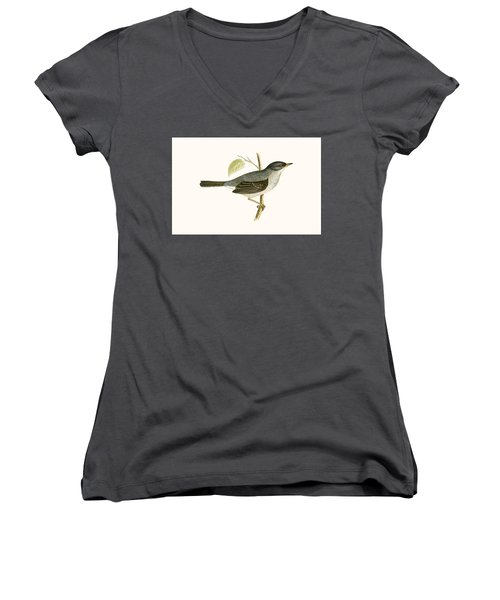 Marmora's Warbler Women's V-Neck T-Shirt (Junior Cut) by English School