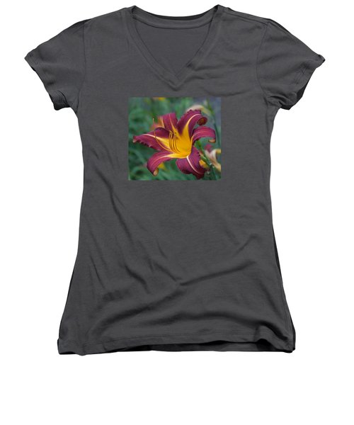 Maroon And Gold Women's V-Neck T-Shirt (Junior Cut) by Arlene Carmel