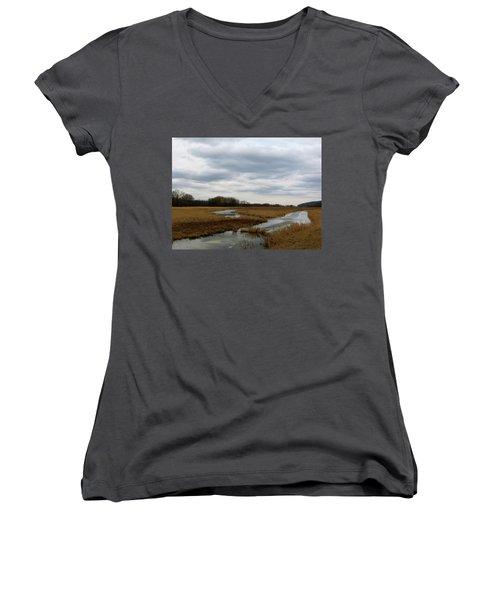 Marsh Day Women's V-Neck T-Shirt