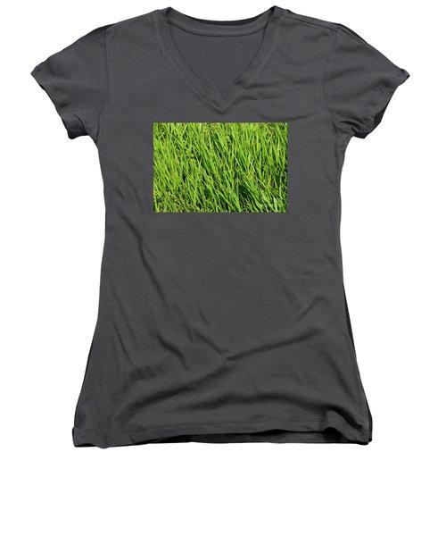 Marsh Grasses Women's V-Neck T-Shirt