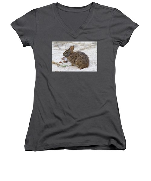 Marsh Rabbit On Dune Women's V-Neck