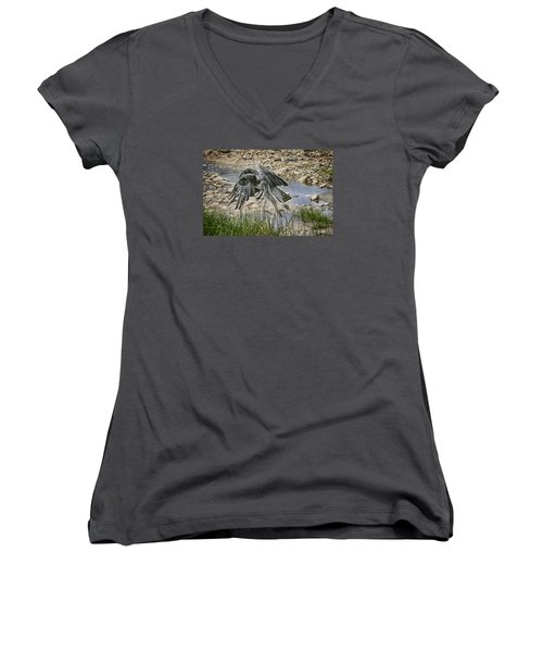 Martial Eagle Women's V-Neck T-Shirt (Junior Cut) by Gary Hall
