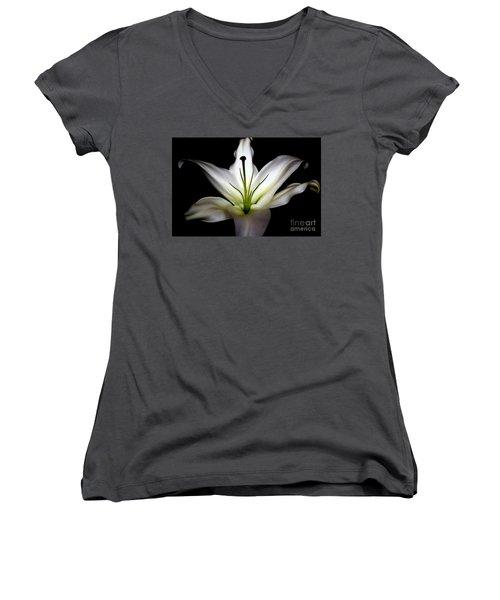 Masculinity Women's V-Neck T-Shirt (Junior Cut) by Diana Mary Sharpton