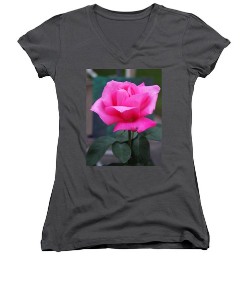 Women's V-Neck T-Shirt featuring the photograph May Beauty by Vadim Levin