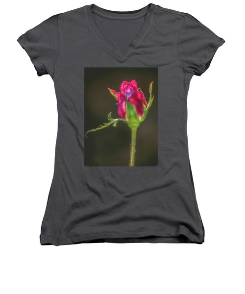 May I Have This Dance Women's V-Neck