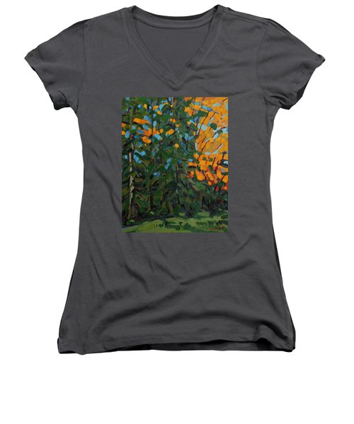 Mcmichael Forest Wall Women's V-Neck T-Shirt (Junior Cut) by Phil Chadwick