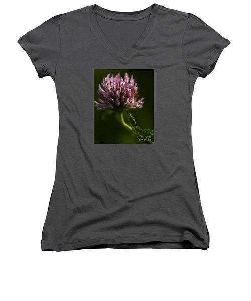 Meadow Clover Women's V-Neck T-Shirt (Junior Cut) by JT Lewis